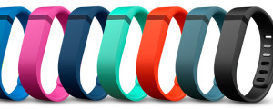 Fitbit Flex Wristband Review