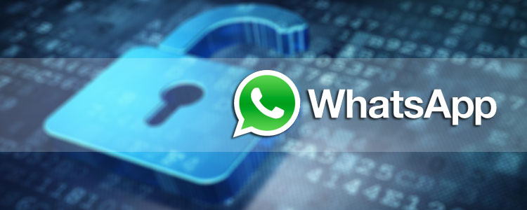 WhatsApp Hack & Spy Tools, Apps, and Software | TechaLook