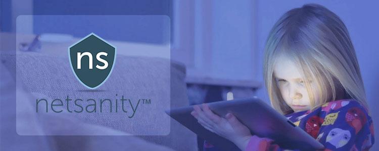 Netsanity Review