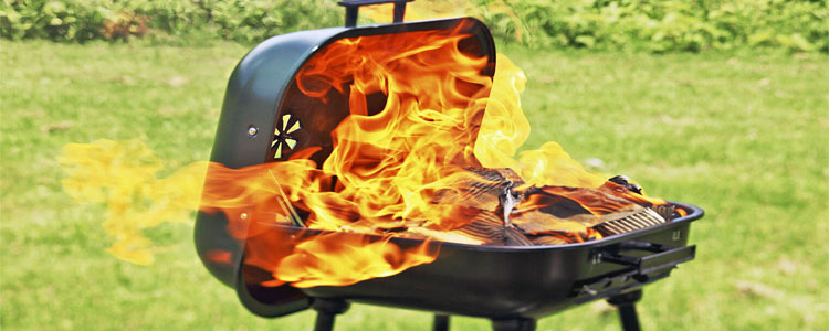 Best 4 Portable Grills (Propane/Gas/Charcoal/Electric)