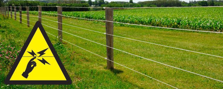 Best 3 Electric Fence Chargers Reviews & Comparison