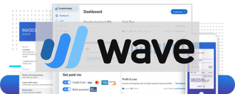 Wave Accounting Review