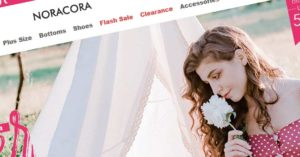 Noracora Review